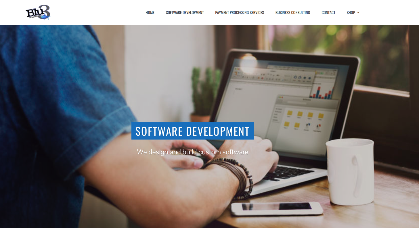 sop for software development