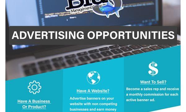 Blu Ads